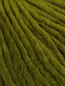 Fiber Content 50% Virgin Wool, 40% Alpaca, 10% Acrylic, Brand Ice Yarns, Green, Yarn Thickness 5 Bulky  Chunky, Craft, Rug, fnt2-43735
