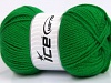 Favorite Green Worsted