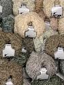 Amigurumi Chenille  Fasergehalt 100% Polyester, Brand Ice Yarns, fnt2-54856