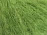 Contenido de fibra 45% Acrílico, 25% Lana, 20% Mohair, 10% Poliamida, Light Green, Brand ICE, fnt2-60057