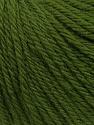 Fiber Content 100% Wool, Brand ICE, Green, Yarn Thickness 4 Medium  Worsted, Afghan, Aran, fnt2-38016